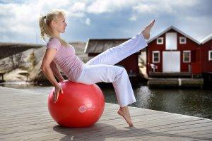 Sissel Exercice Ball 55 cm