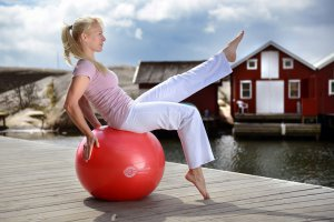 Sissel Exercice Ball 65 cm